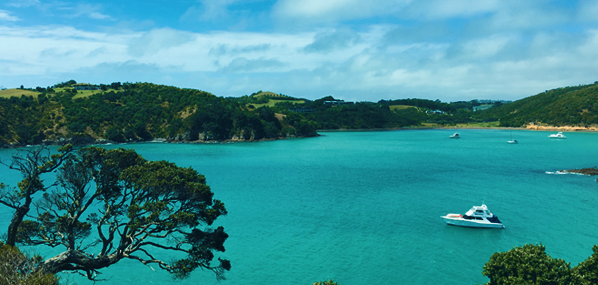 Travelibro Travel Blog Waiheke Island The Happiest Place On Earth Read to Travel