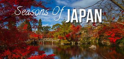TraveLibro Seasons of Japan by Lizzie Meets World