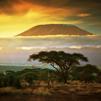 TraveLibro Tanzania Arusha Lake Manyara National Park Ngorongoro Serengeti National Park TANZANIA - 07 DAYS