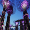 TraveLibro Singapore Singapore featured city SINGAPORE - 05 DAYS