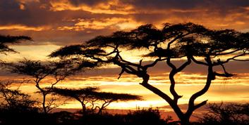 TraveLibro Tanzania