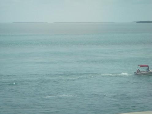 travelibro United States of America Miami Welcome to Miami B!@#$ DSC01932.JPG