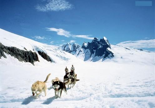 travelibro Canada Banff Jasper Lake Louise Vancouver Whistler Charismatic Canada & Astonishing Alaska Juneau-Dog-Sledding-on-the-Mendenhall-Glacier_by-Helicopter-10.jpg