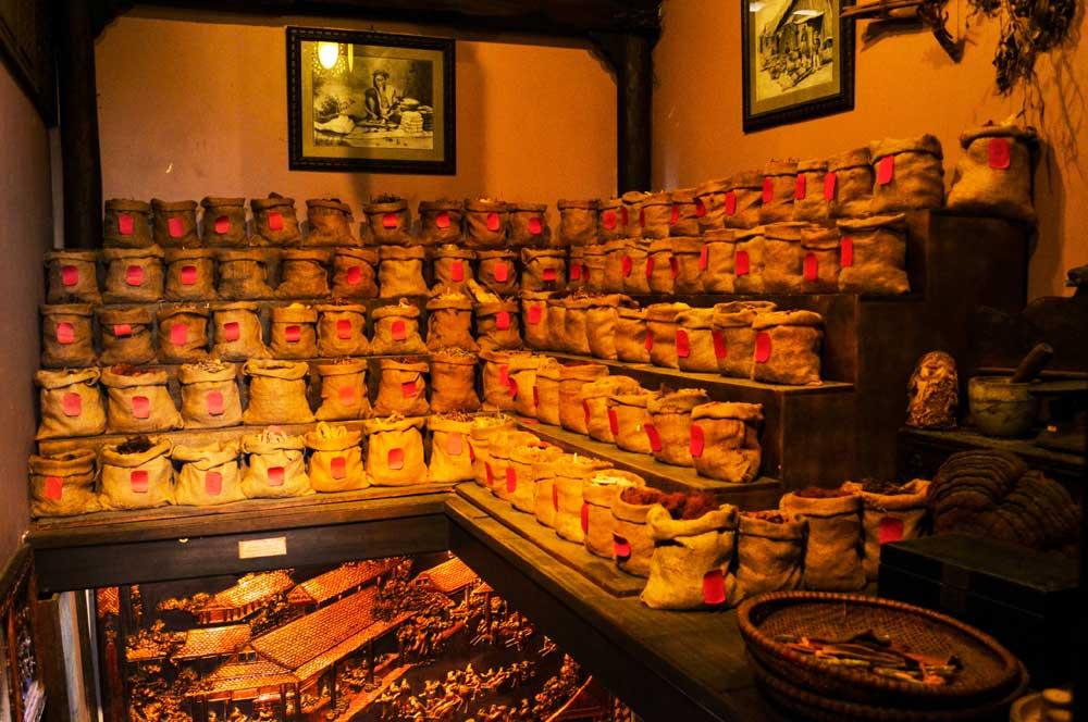 travelibro Vietnam Da Lat Hanoi Ho Chi Minh City Hoi An Hue Mui Ne Nha Trang Sa Pa Explore Vietnam FITO Museum