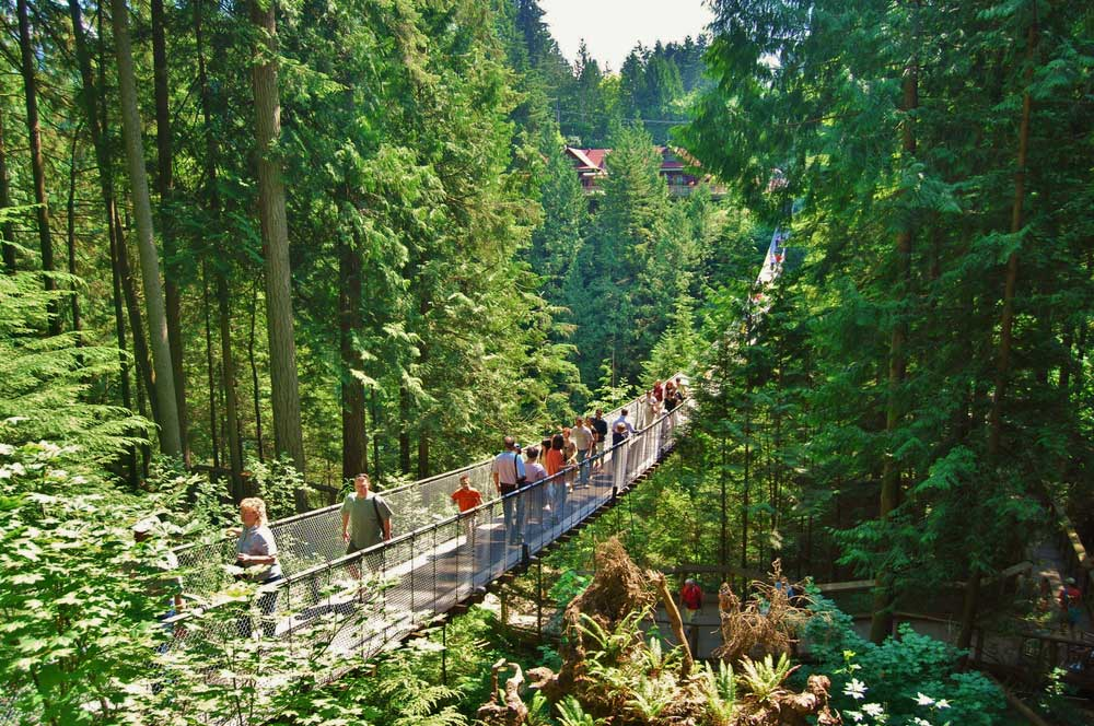 Capilano suspension bridge  vancouver  lissandra melo %28slash%29 shutterstock %28dot com%29