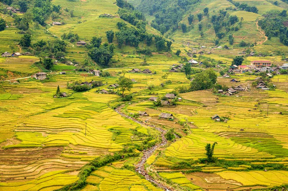 Muong hoa valley   ta van village