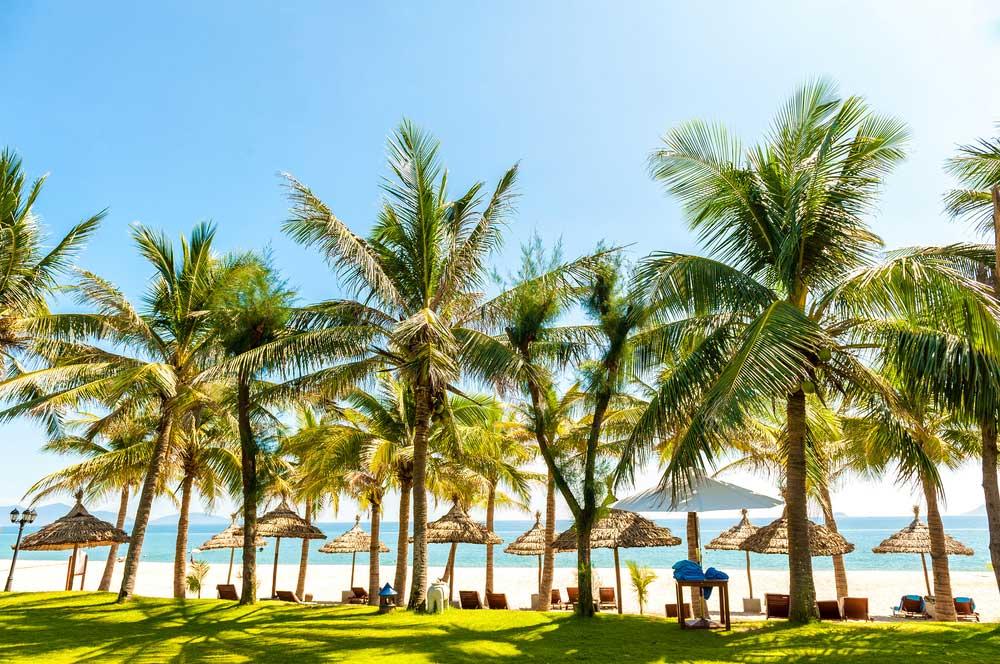 travelibro Vietnam Da Lat Hanoi Ho Chi Minh City Hoi An Hue Mui Ne Nha Trang Sa Pa Explore Vietnam Cau Dai Beach