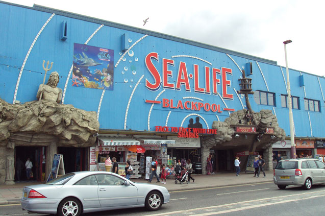 3 blackpool sea life centre rept0n1x wikimedia commons