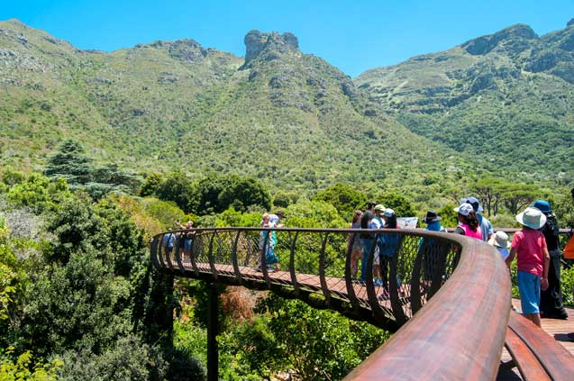 travelibro South Africa Cape Town The Cape Town Experience Kirstenbosch National Botanical Gardens