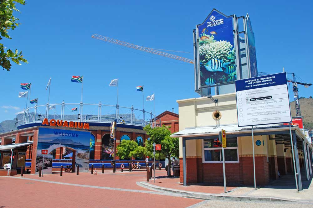 travelibro South Africa Cape Town The Cape Town Experience Two Oceans Aquarium