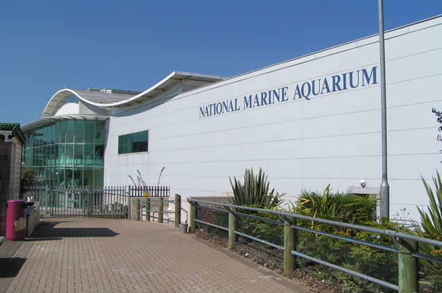 travelibro United Kingdom Blackpool Cumbria Edinburgh Glasgow London Torquay UK Family National Marine Aquarium