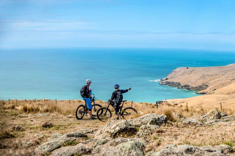 travelibro New Zealand Auckland Christchurch Franz Josef Queenstown Rotorua Wellington New Zealand Budget Mountain Biking