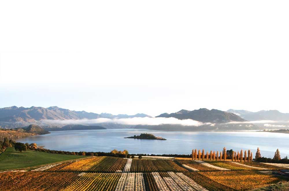 travelibro New Zealand Auckland Christchurch Franz Josef Queenstown Rotorua Taupo Wanaka Wellington Whitianga NZ Honeymoon Rippon Vineyard