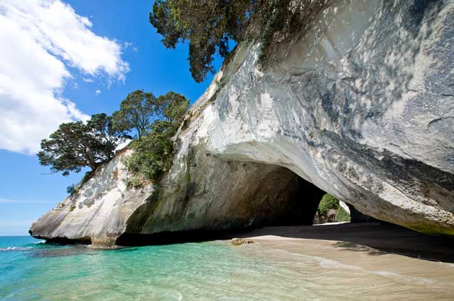 travelibro New Zealand Auckland Christchurch Franz Josef Queenstown Taupo Wanaka Wellington Whitianga New Zealand Family Cathedral Cove