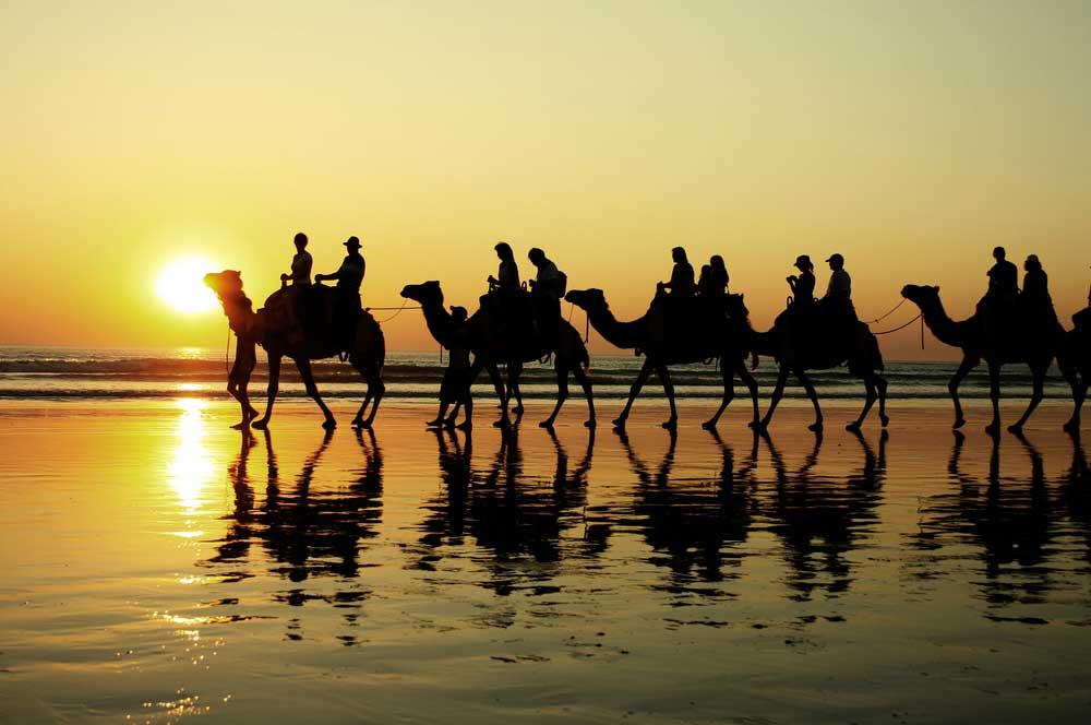 travelibro Australia Adelaide Brisbane Broome Darwin Gold Coast Melbourne Perth Sydney Whitsundays Australia Backpacking Camel Rides on Cable Beach
