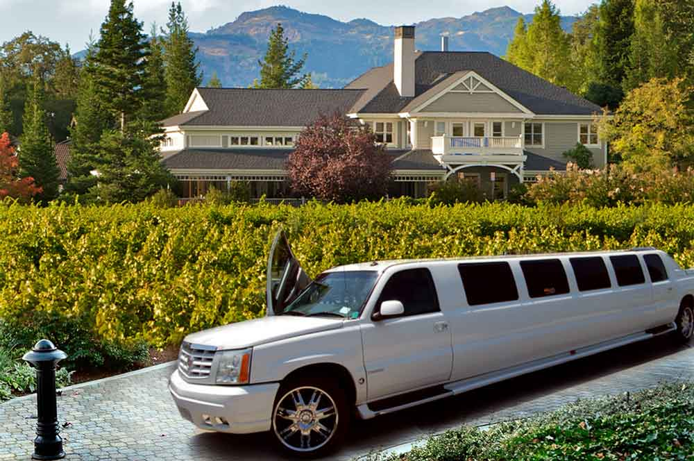 21.napa valley in limousine winfolly