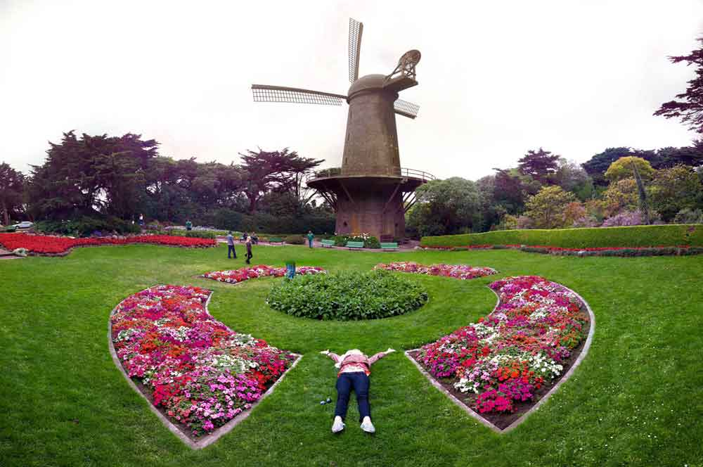 5.golden gate park san francisco nate bolt via flikr
