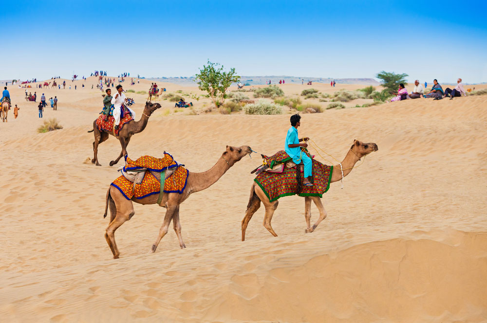travelibro India Delhi Goa Jaipur Jaisalmer Leh Manali Ranthambore National Park Rishikesh Shimla India Adventure Sam Sand Dunes
