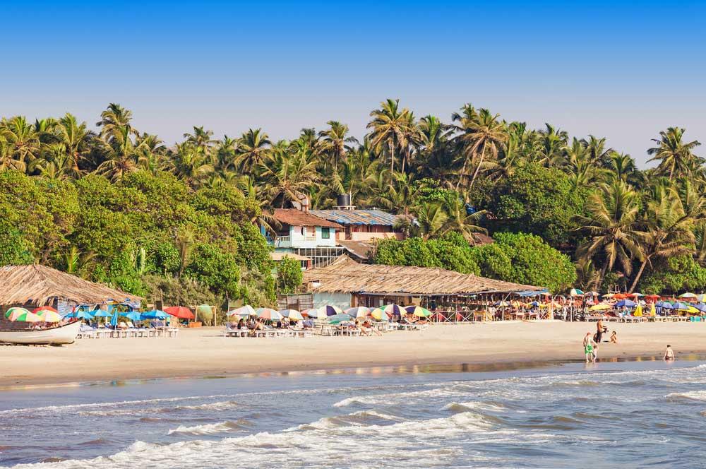 travelibro India Agra Bangalore Delhi Goa Hampi Jaipur Kochi Mumbai India Budget Arambol Beach