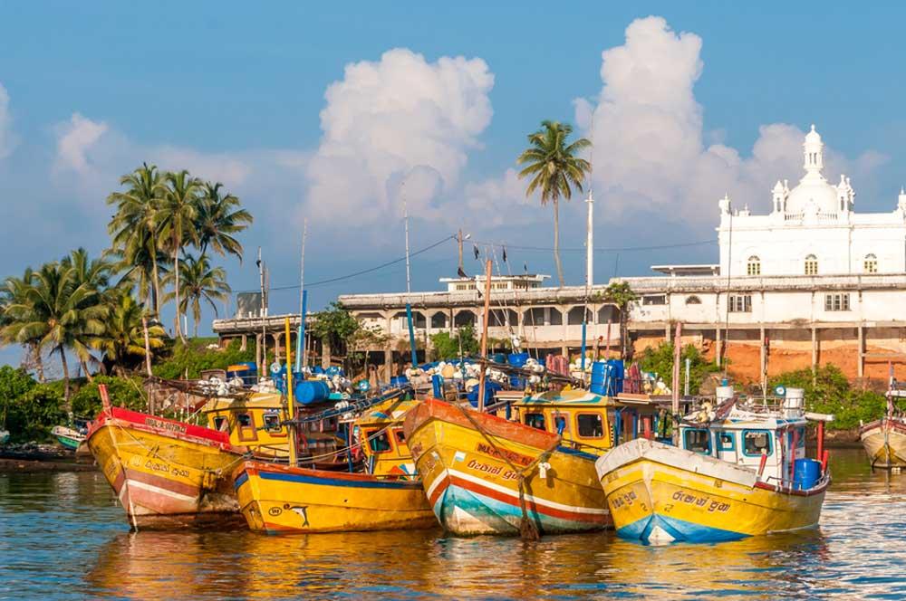 travelibro Sri Lanka Bentota Colombo Kandy Negombo Nuwara Eliya Sri Lanka Backpacking Beruwala Fishing Harbour