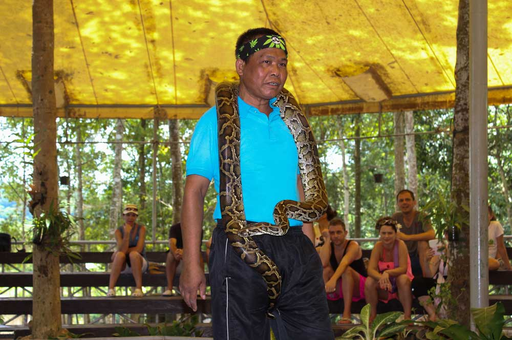 travelibro Thailand Bangkok Chiang Mai Hua Hin Ko Samui Pattaya Phuket Thailand Backpacking Samui Snake Farm