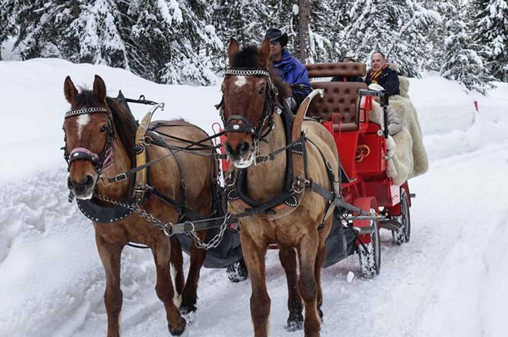 travelibro Switzerland Geneva Interlaken Montreux St. Moritz Zermatt Zurich Switzerland Honeymoon Horse Drawn Carriage