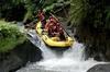 White water rafting at ayung river in ubud 186536