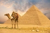 travelibro Egypt Cairo Private Tour: Visit Egyptian museum - Citadel of Saladin - Churches of St Sergio's - Hanging Church and Ben Ezra synagogue cairo-giza-pyramids_700_0.jpg