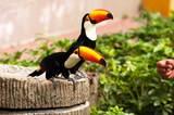 Jurong bird park tomasz kubis shutterstock