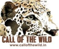Call of the wild logo  28jpeg 29